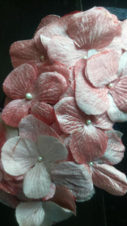 bibi ogive,fleurs d'hortensias